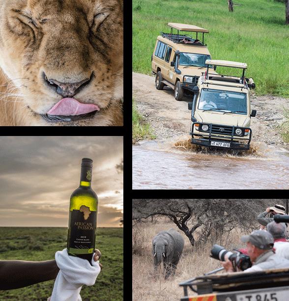 About Pamoja Safaris