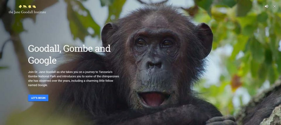 Jane Goodall's Chimps & Google Earth