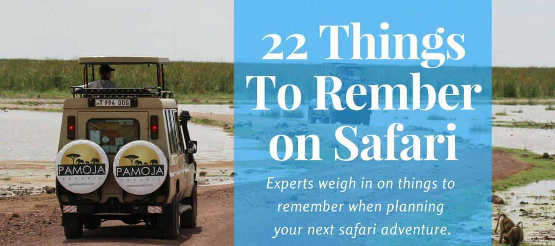 22 Things to Remember on Safari